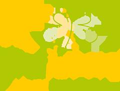 Logo Grafideen Designagentur